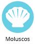 icono-moluscos