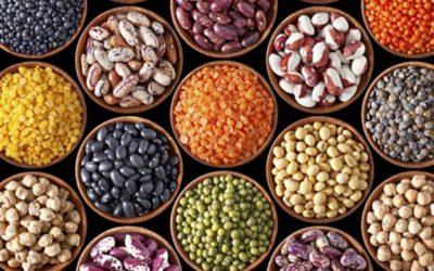 Las legumbres, indispensables en una dieta equilibrada