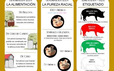 Jamón ibérico, clasificación y etiquetado